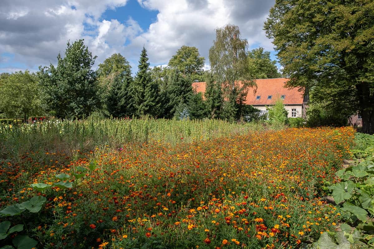 Der Garten gegenüber des Missionshauses